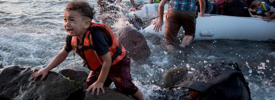 Syrian-Rapa15-15